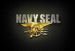 Технология обучения Navy SEAL