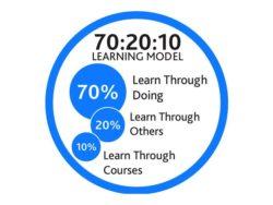 Модель обучения 70-20-10
