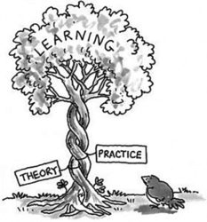 Теория и практика в обучении
